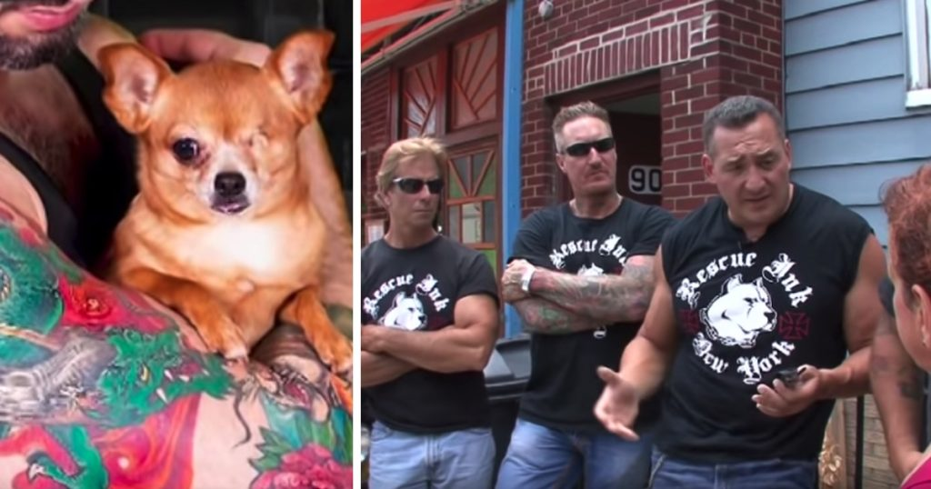 Tough Biker Gang Takes A Stand Against Abusive Pet Owners And Confronts Them