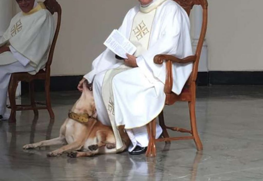 Dog Crashes Church Service, And The Priest Embraces His Inner Child