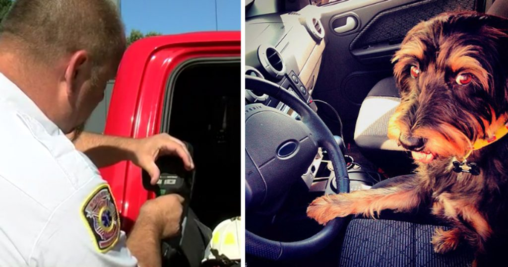 Owner Leaves Dog In Hot Car, Dashboard Quickly Fires Up To 158-Degrees