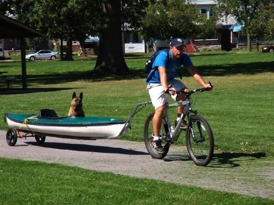 Man Does Wonderful Thing So His Blind, 3-Legged Dog Can Have Fun With Him Outdoors