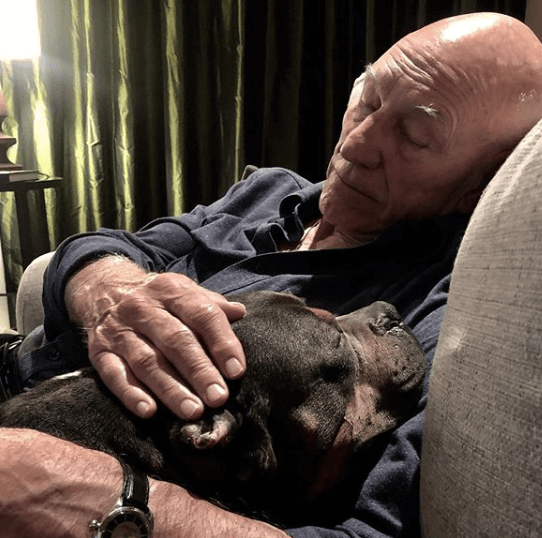 Patrick Stewart and wife 'eased' foster dog over Rainbow Bridge shortly after taking him in