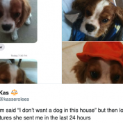 10 Moms Who Wanted Nothing To Do With The Dog But Came Around Soon Enough