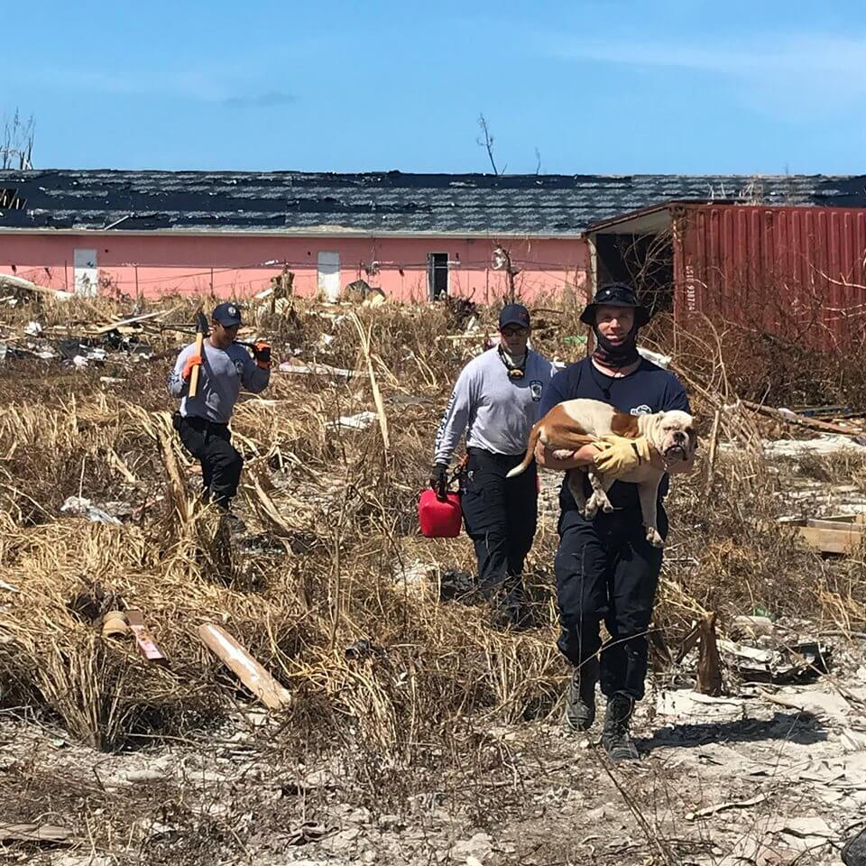 Firefighters rescue dog in Bahamas trapped in rubble after hurricane