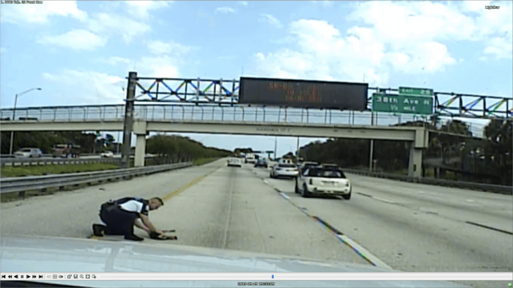 Police officer caught on dash cam coming to rescue of dog hit by car