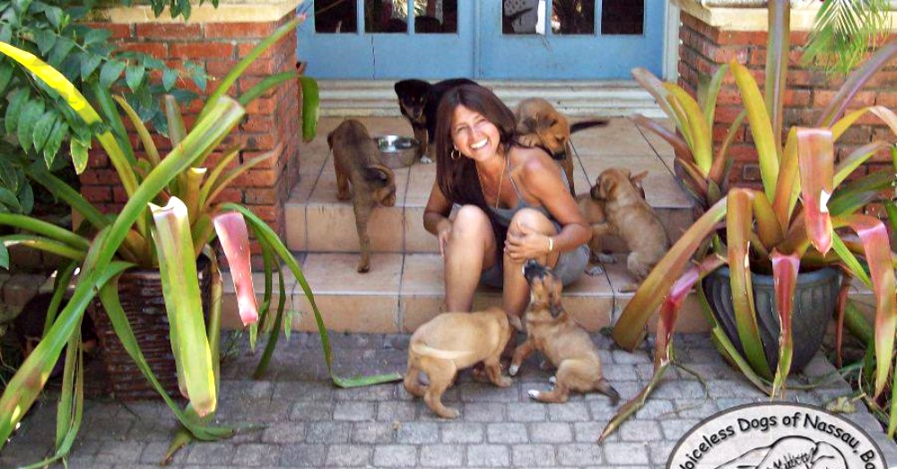 Woman Opens Her Home To 97 Stray Dogs As Hurricane Dorian Rips Through The Bahamas