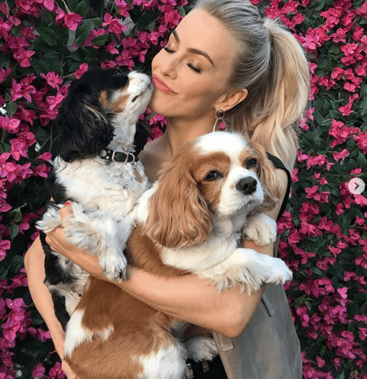 Julianne Hough mourns loss of two beloved dogs