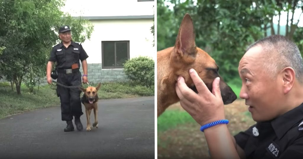 Cop Finds K9s Neglected In Their Retirement, Spends His Savings To Care For Them