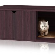 The Top 10 Litterboxes And Accessories Your Pet Really Wants This Year