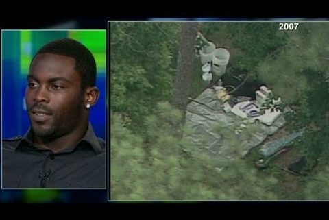 NFL announces Michael Vick as Pro Bowl captain despite dogfighting past