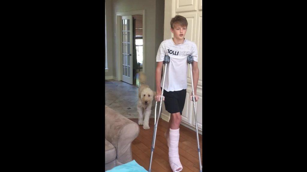 Dog Perfectly Mocks Teenager's Broken Leg 'Walk'