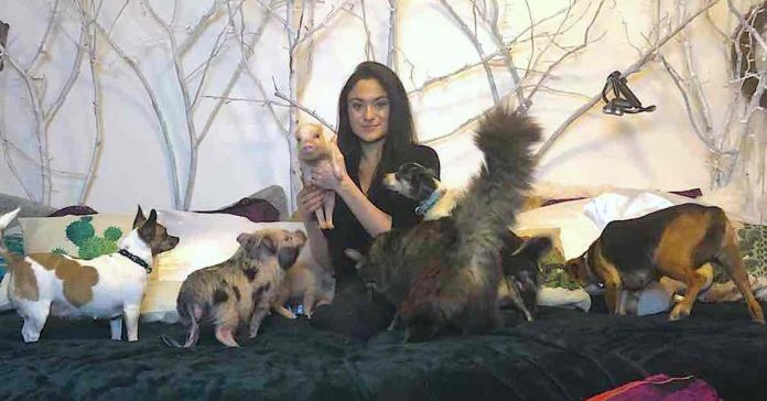 Woman Spends $10,000 A Year On Vet Bills And Opens Home Up To 90 Rescue Animals