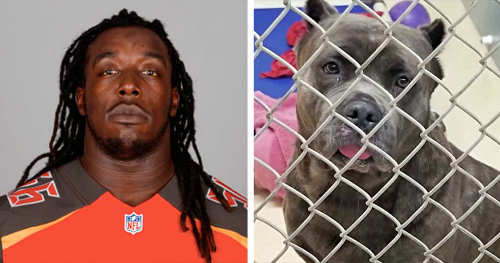 NFL Player Abandoned His Dog On Side Of Road Cause He's 'Expecting A Baby'