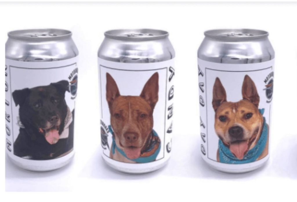 Brewery featuring homeless shelter dogs on beer cans