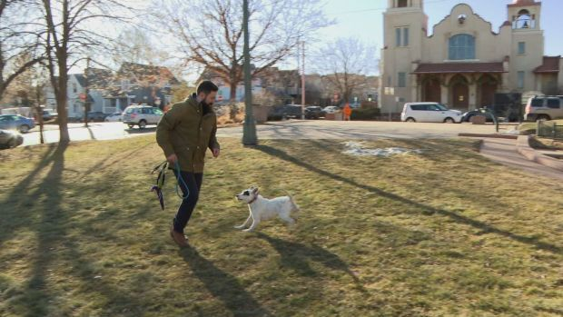 Dog Owner Warns Others Of 'Pet Flipping'