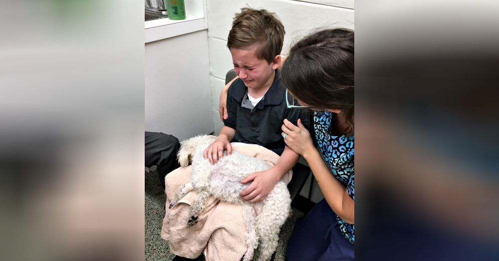 Adopted Boy Wanted To Be The One To Hold His Dying Dog As She Went To Heaven