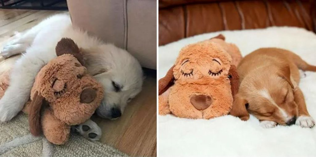 This Cute Snuggle Puppy Could Be The Cure For Your Dog's Stress