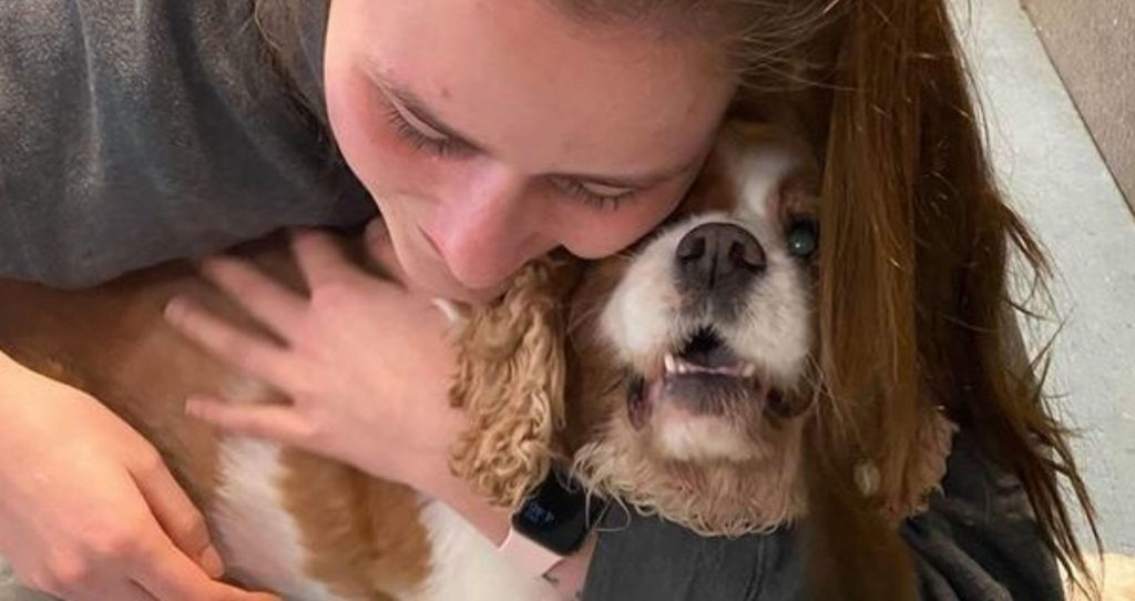 Microchips work: Dog reunited with his family after 7 years