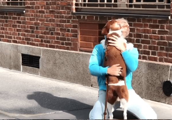 After 7 years, Andy Cohen decided to rehome his rescue dog