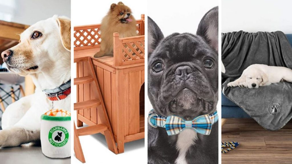 22 Best Dog Products To Treat Your Pup