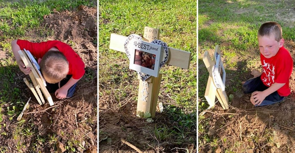 Boy Grieves Over Best Friend's Grave After Dog Was Shot 8 Times With Pellet Gun