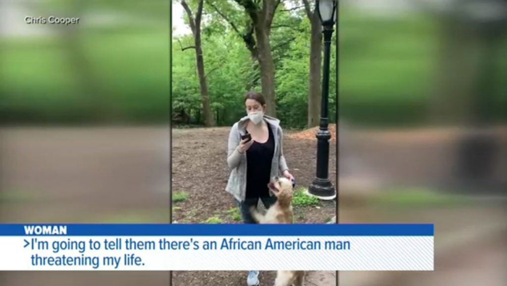 White woman who called police on black man in Central Park gets dog back