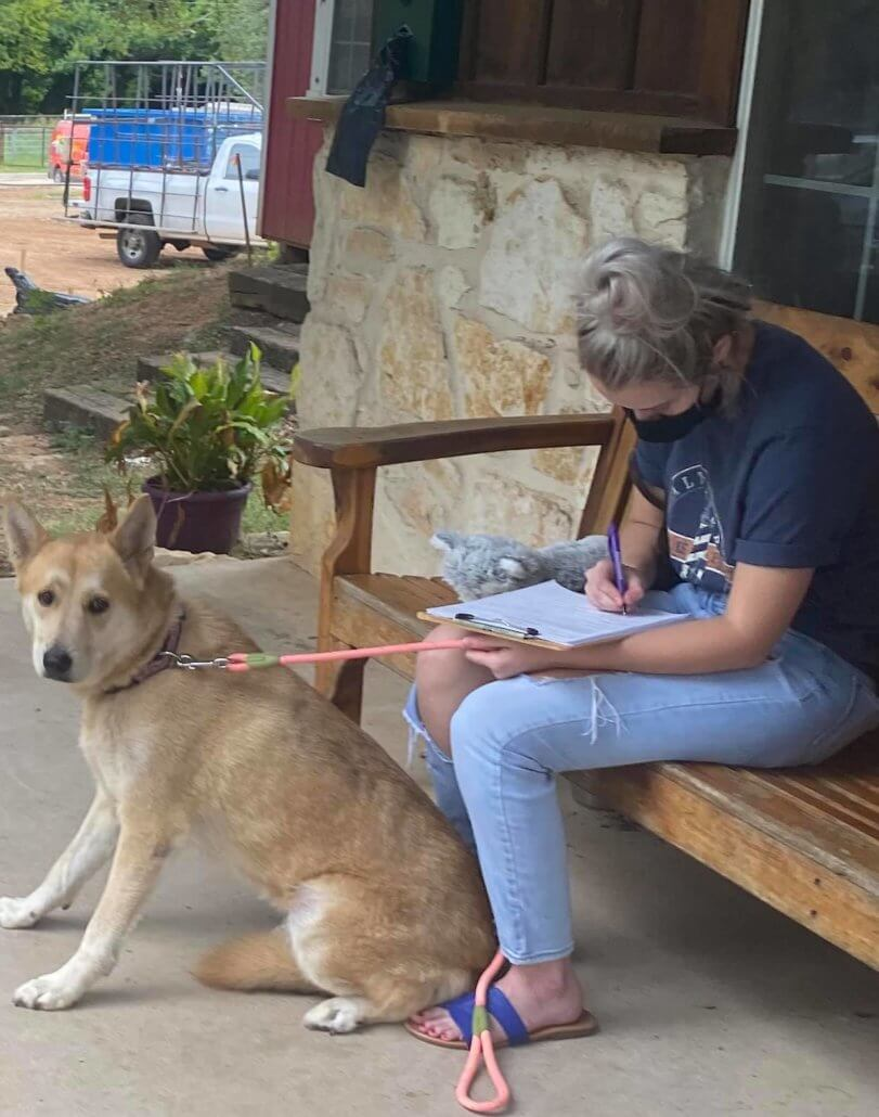 Owner moving – returns dog to shelter where she was adopted from as a puppy