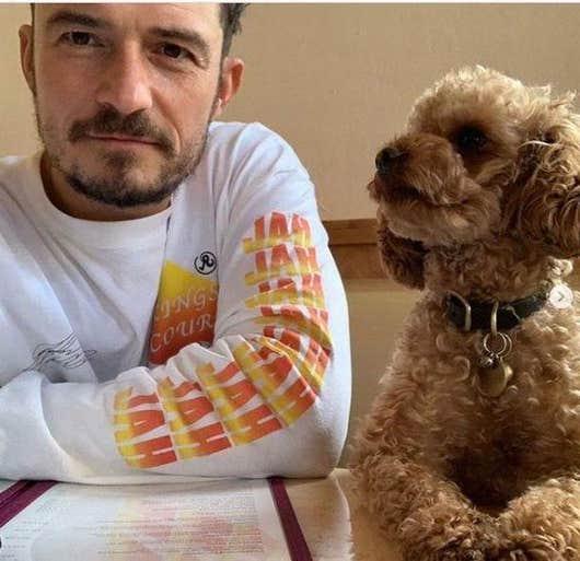 Orlando Bloom confirms missing beloved dog Mighty died