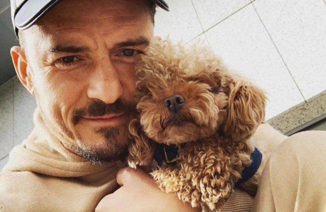 'My heart is already broken' Orlando Bloom needs help finding his dog