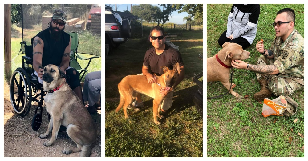 Texas Woman Rescues Shelter Dogs To Become Service Animals For Vets Struggling With PTSD