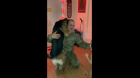 Exuberant Canine Pushes Kid Out Of The Way To Welcome Daddy Home