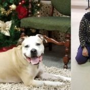 Family Reunited With Pit Bull 8 Years After He Was Stolen in a Home Invasion