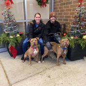 PJ adoption night worked! Bonded shelter friends have found a home