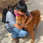 Woman Bursts Into Tears When She Is Finally Reunited With Dog Who's Been Missing For 7 Years