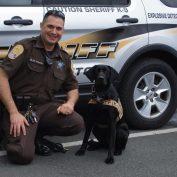 Virginia Sheriff's K-9 Cara killed in the line of duty when she fell off bridge