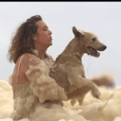 Dog at Queensland beach lost in huge sea foam rescued by onlookers