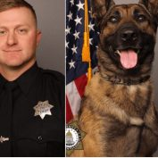 Deputy and police K9 killed in shootout