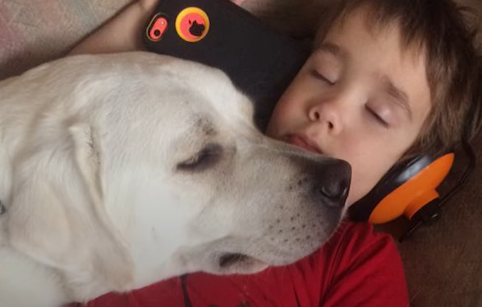 The Incredible Friendship Between A Boy And His Autism Service Dog