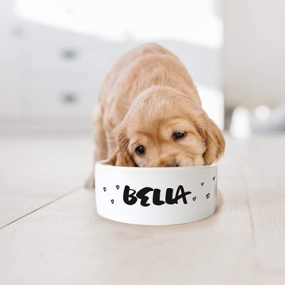 Personalized Pet Bowl with Your Pet's Name