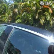 Sarasota police smash car window to save dog from 115-degree heat