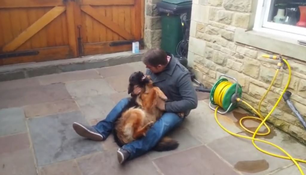 Dog Cries Out In Happiness After Months Apart From Owner