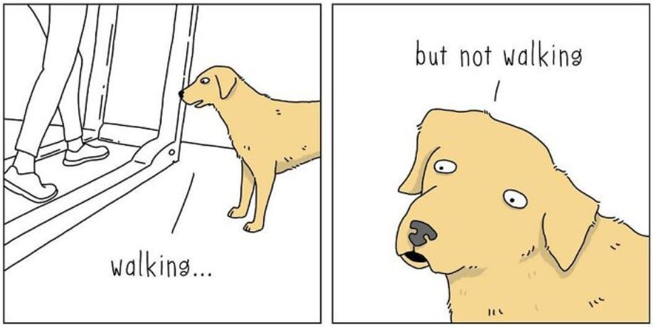 20 Funny Comics Showing What Animals Would Say If They Could Talk